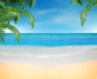 plage Photographie stock libre de droits
