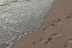 Plage adriatique Image libre de droits