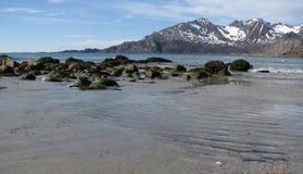 Plage arctique Photos libres de droits