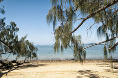 Plage au Queensland, Australie Images stock