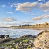 Plage Auckland Nouvelle-Zélande de Muriwai Photographie stock