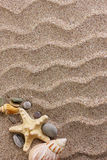 Plage avec beaucoup de seashells photo stock