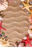 Plage avec beaucoup de seashells images stock