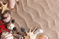 Plage avec beaucoup de seashells photos stock