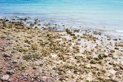 Plage avec des roches images stock