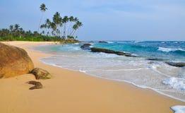 Plage avec le sable et les palmiers blancs Image libre de droits