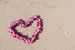 Plage blanche de sable de mer d'orchidée de guirlande en forme de coeur de fleur Image libre de droits