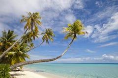 Plage blanche de sable en île de paradis Images stock