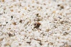 Plage blanche en Sardaigne Photographie stock libre de droits