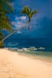 Plage blanche tropicale de sable avec des arbres de noix de coco Image stock