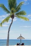Plage blanche tropicale de sable avec des arbres de noix de coco, Photographie stock