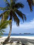 Plage blanche tropicale des Caraïbes de sable Photos stock