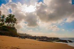 Plage br?silienne avec la mer ? sable jaune et bleue par temps ensoleill? brazil salvador beau chiffre dimensionnel illustration  photographie stock libre de droits