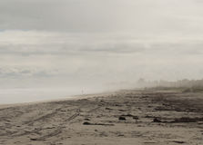 Plage brumeuse de matin Image libre de droits