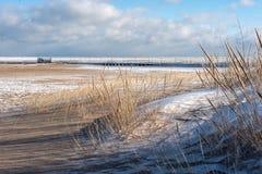 plage congelée le long de rivage du lac Michigan en hiver photos libres de droits