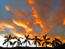 Plage Costa Rica d'Avellana de coucher du soleil Photos stock