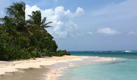 Plage Culebra de flamenco Photos stock