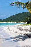 Plage Culebra de flamenco Photo stock