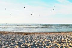 Plage d'été aux contreseings de port, le lac Huron images stock