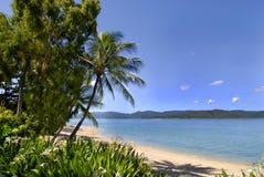 Plage d'île Images libres de droits
