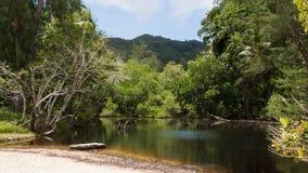 Plage d'Anse Takamaka en Seychelles Photo stock