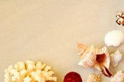 Plage d'?t? Seashell sur le sable Vue sup?rieure image stock