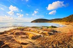 Plage de baie de Cala Violina dans Maremma, Toscane. La mer Méditerranée. I image libre de droits