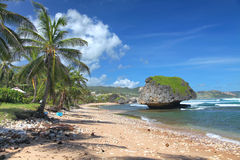 Plage de Bathsheba, Barbade Photographie stock libre de droits