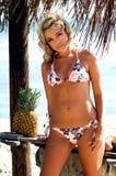 Plage de bikini blonde Image libre de droits