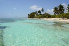 Plage de Bois-Jolan i Sainte-Anne, Guadeloupe Royaltyfria Foton