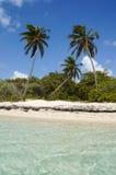 Plage de Bois-Jolan in Sainte-Anne, Guadeloupe Royalty Free Stock Image