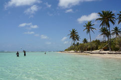 Plage de Bois-Jolan in Sainte-Anne, Guadeloupe Royalty Free Stock Photos
