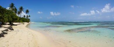 Plage De bois-Jolan w Anne, Guadeloupe Zdjęcie Stock