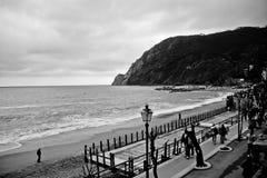 Plage de bord de la mer en noir et blanc Photos stock