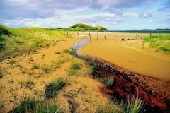 Plage de brebis de loch, Wester Ross, Ecosse Images stock
