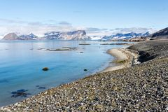 Plage de côte en Spitzberg, arctique Photographie stock libre de droits