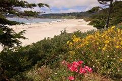 Plage de Carmel, la Californie Images libres de droits