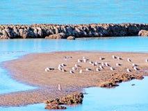 Plage de Chipiona à Cadix Photos libres de droits
