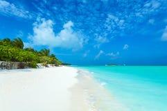 Plage de corail blanche de sable, Maldives photos stock