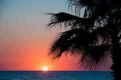 Plage de coucher du soleil, égalisant la mer, palmiers image libre de droits
