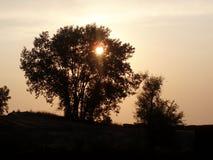 Plage de coucher du soleil Photo libre de droits