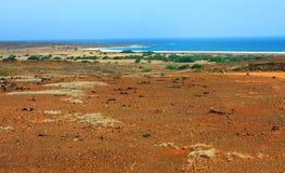 Plage de désert Image stock