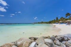 Plage de flamant à l'île d'Aruba Photo stock