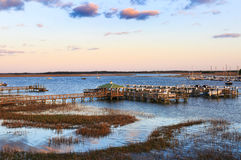 Plage de folie Carolina Marina du sud dans la lumière de soirée Photo stock