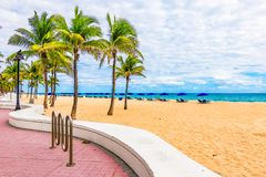 Plage de Fort Lauderdale avec des palmiers, la Floride, Etats-Unis image libre de droits