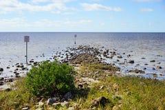 Plage de hernando de la Floride : oiseau sur la roche image libre de droits