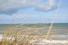 Plage de Juno photos libres de droits