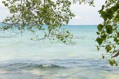 Plage de Kalapattar à l'île de Havelock Image stock