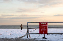 Plage de l'hiver photographie stock libre de droits