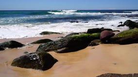 Plage de l'océan pacifique, Australie banque de vidéos